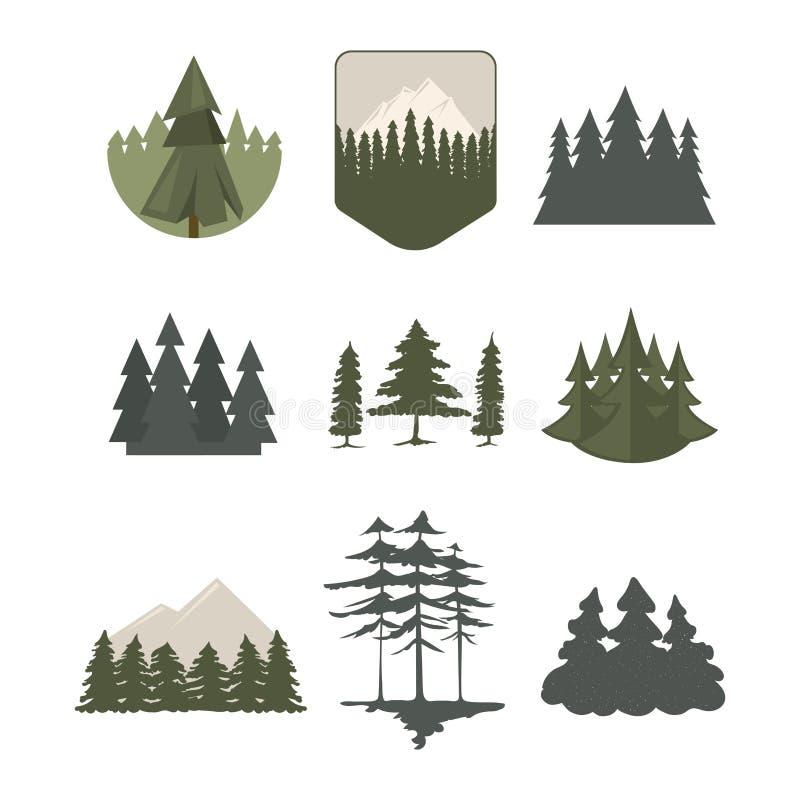 Vettore naturale conifero del disegno del gambo della foglia della pianta del cedro del ramo dell'abete rosso del pino delle cime royalty illustrazione gratis