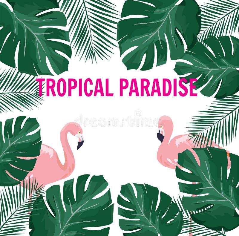Vettore Paradise tropicale con i fenicotteri illustrazione vettoriale