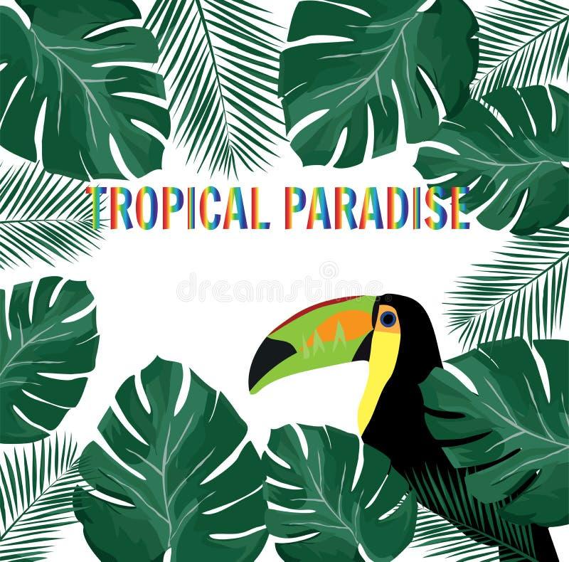 Vettore Paradise tropicale con l'uccello del tucano illustrazione di stock