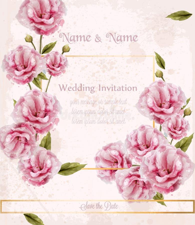 Vettore selvaggio della carta delle rose di rosa dell'acquerello Belle insegne floreali delle decorazioni illustrazione vettoriale