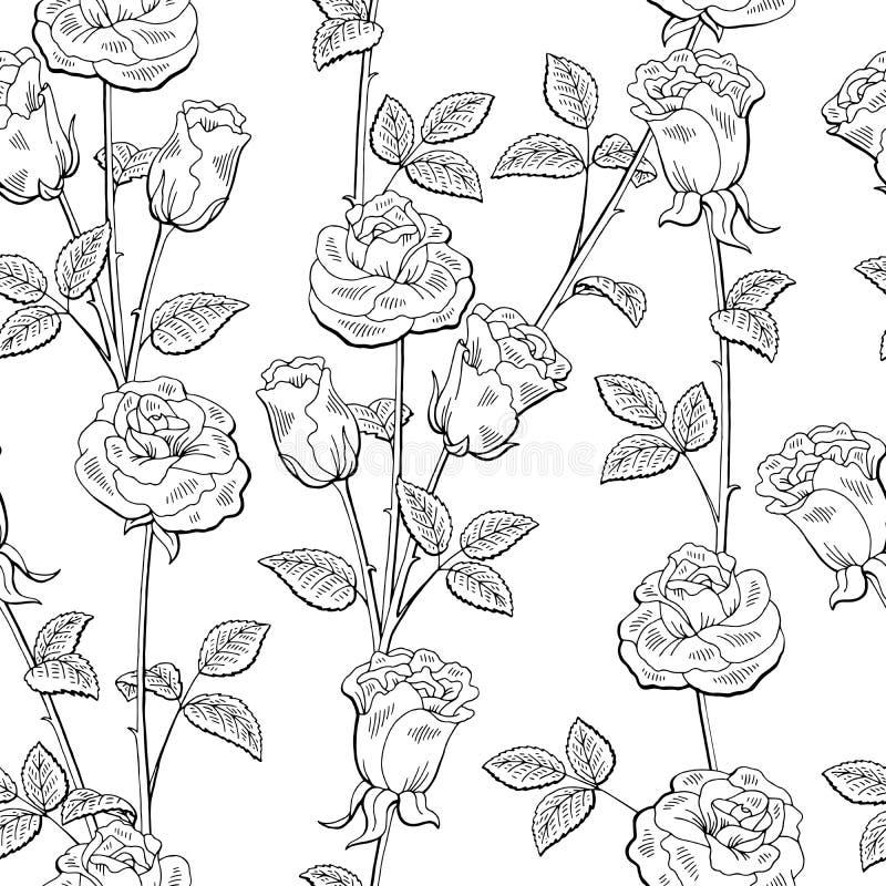 Vettore senza cuciture bianco nero grafico dell'illustrazione del fondo di schizzo del modello del fiore di Rosa illustrazione di stock