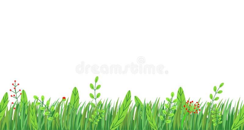 Vettore senza cuciture del confine dell'erba della primavera Elemento floreale della pianta della natura di primavera isolato su  illustrazione di stock