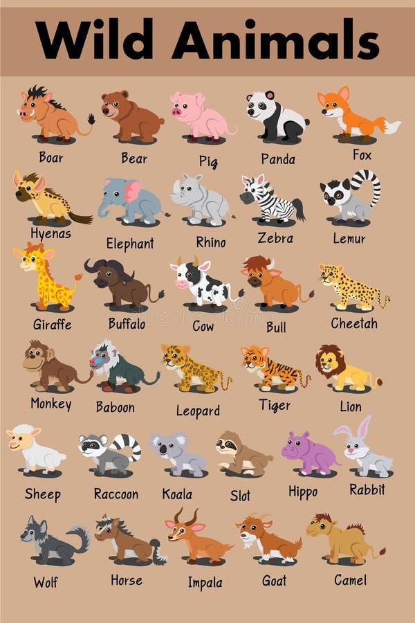 Vettore sveglio del fumetto del maiale dell'orso di panda del leopardo della zebra dell'ippopotamo della tigre del bufalo del pro illustrazione vettoriale