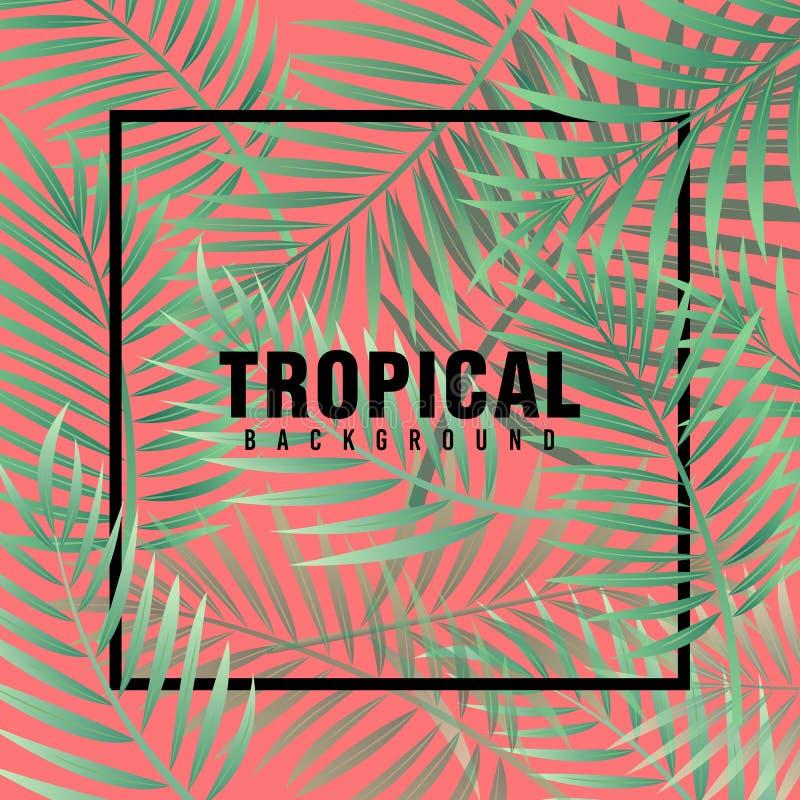 Vettore tropicale della priorità bassa illustrazione di stock