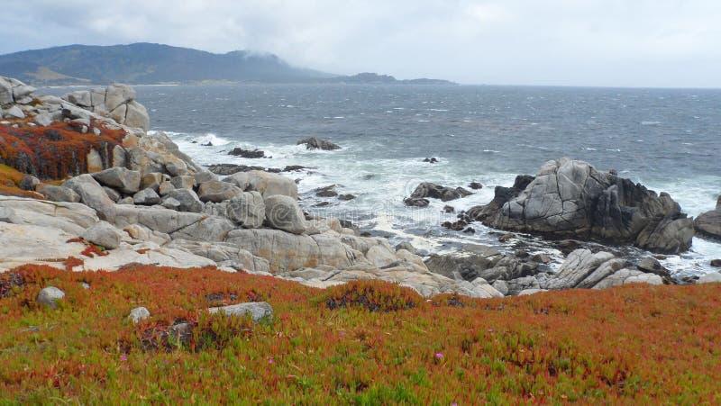Vew da costa de Monterey fotografia de stock