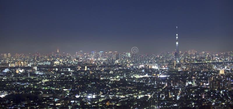 Vew der Nacht Tokyo mit Himmel-Baum lizenzfreie stockfotografie