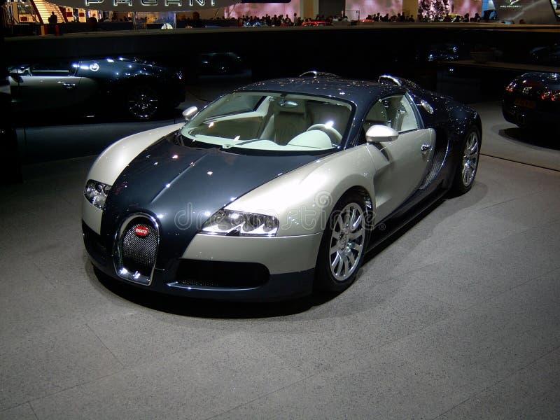 Veyron stock foto's