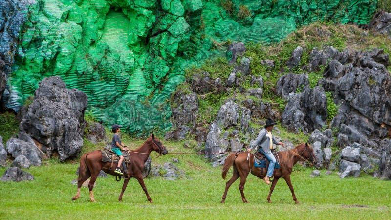 Viñales dal, Kuba: utfärder på hästrygg i den Vinales nationalparken royaltyfria foton