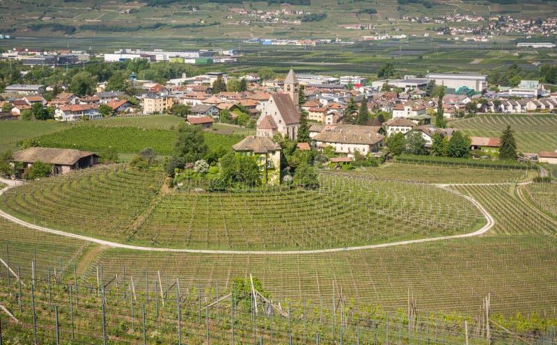 Viñedo circular característico en el Tyrol del sur, Egna, Bolzano, Italia en el camino del vino imagen de archivo libre de regalías