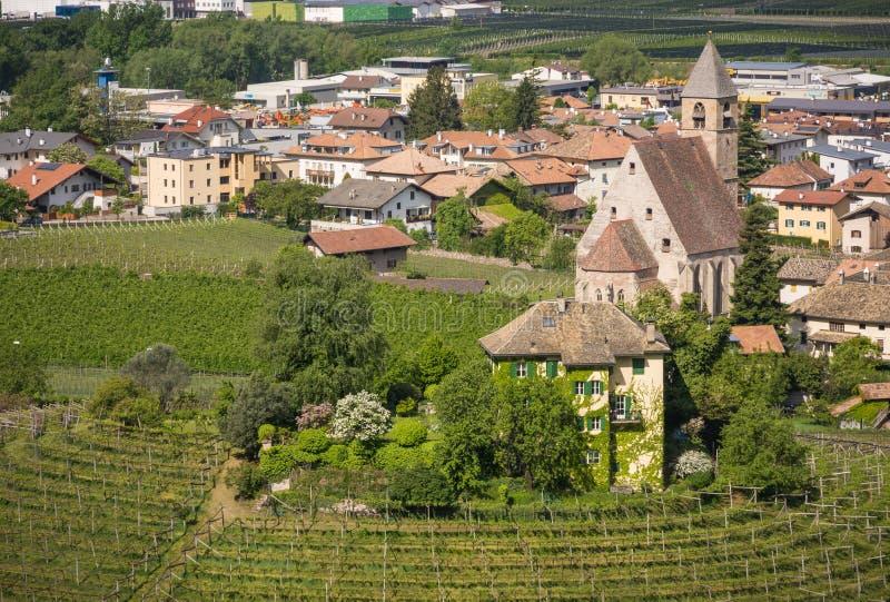Viñedo circular característico en el Tyrol del sur, Egna, Bolzano, Italia en el camino del vino fotos de archivo