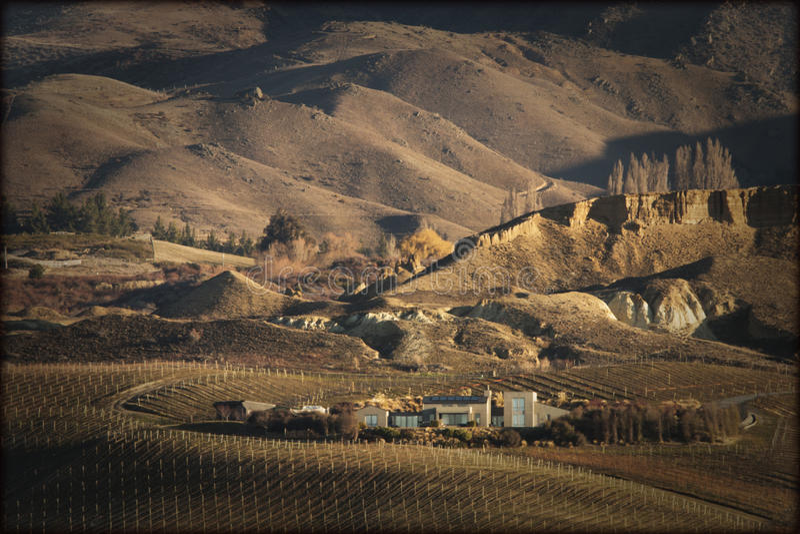 Viñedo de la dificultad del Mt, Cromwell, Otago central, Nueva Zelanda fotografía de archivo