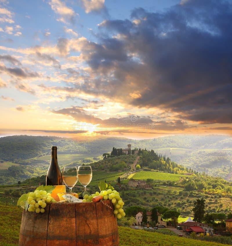 Viñedo en Chianti, Toscana foto de archivo libre de regalías