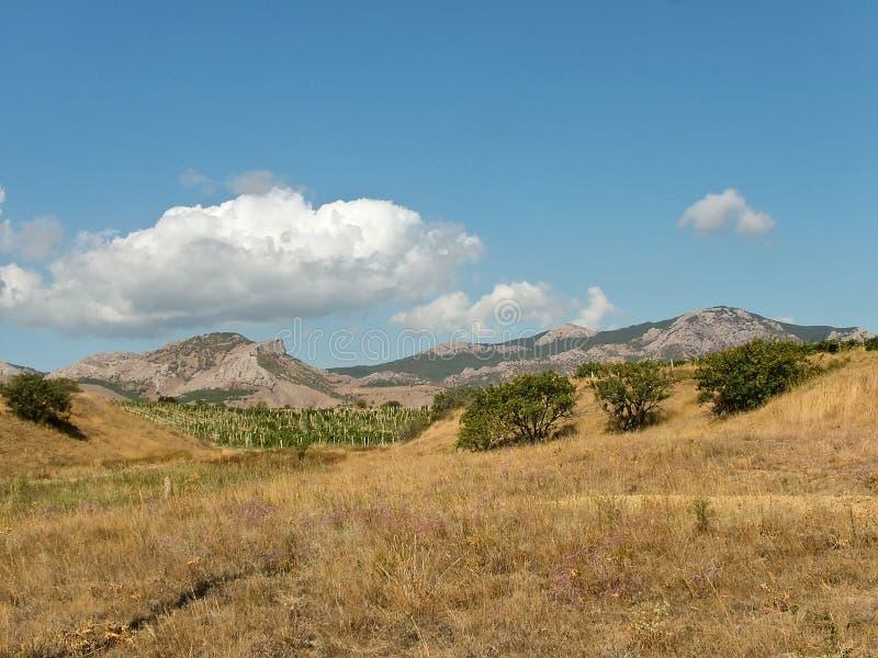 Viñedo, montañas, estepa en Crimea del este imagen de archivo