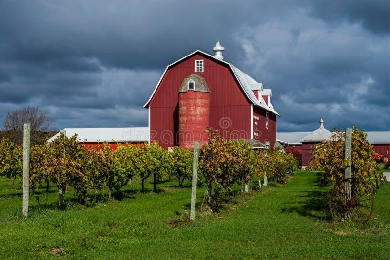Viñedo y granero, el condado de Door, Wisconsin imagen de archivo