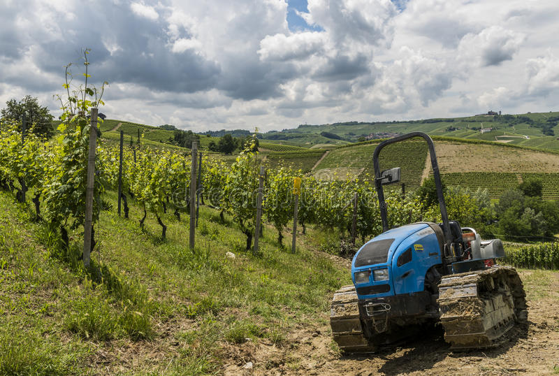 Viñedos con el tractor de Garbelletto Piamonte fotografía de archivo libre de regalías
