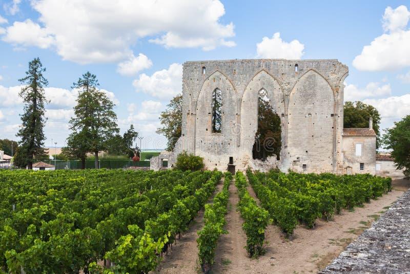 Viñedos de Saint Emilion con la iglesia arruinada, Burdeos fotografía de archivo