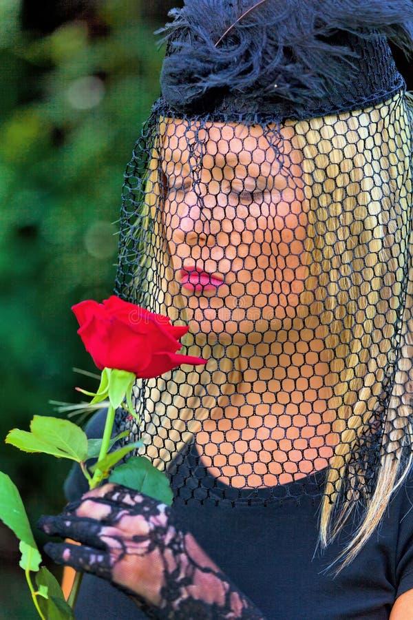 A viúva com véu e levantou-se imagens de stock royalty free