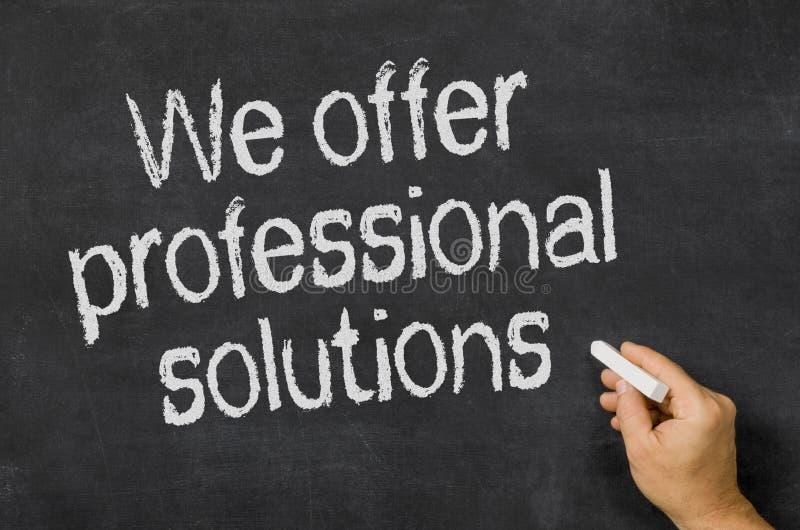 Vi erbjuder yrkesmässiga lösningar arkivfoton