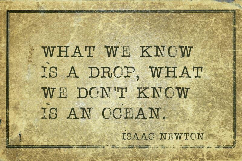 Vi vet Newton arkivbilder