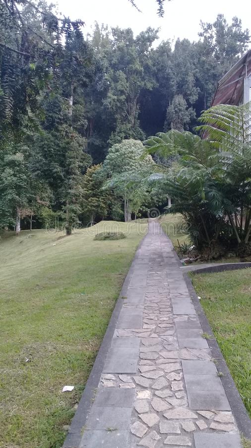 Via ai giardini botanici di Bali immagini stock