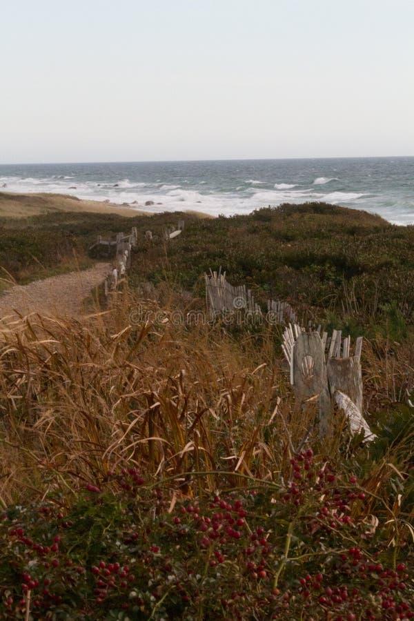 Via alla spiaggia fotografie stock