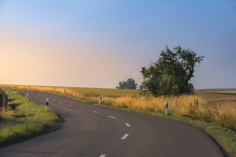 Via attraverso la natura alla luce dell'alba immagine stock libera da diritti