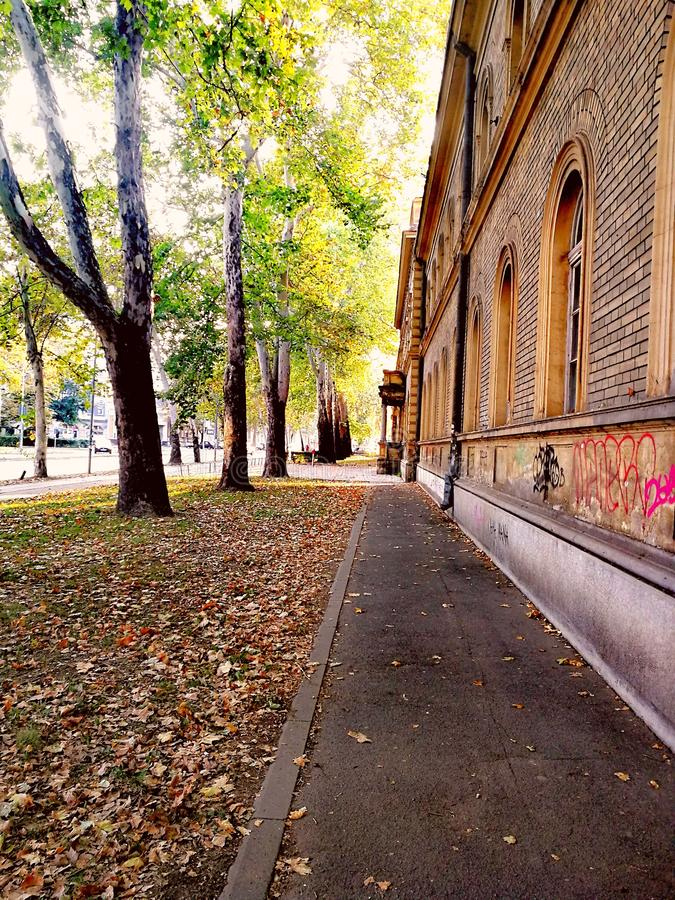 Via in autunno fotografia stock