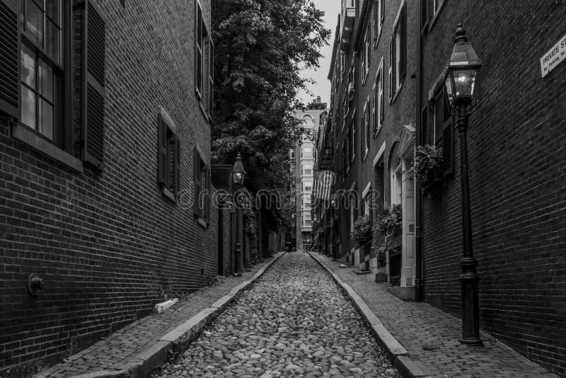 Via Boston della ghianda fotografie stock libere da diritti