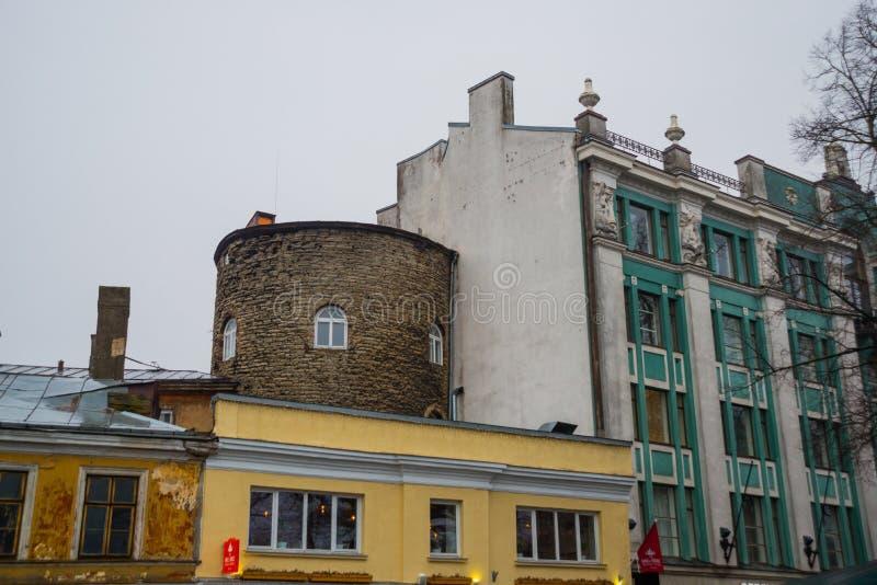 Via con le facciate delle case nella capitale dell'Estonia Vecchia città Estone, Tallinn immagine stock libera da diritti
