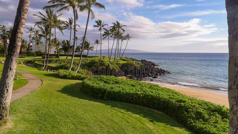 Via costiera in Maui immagini stock libere da diritti