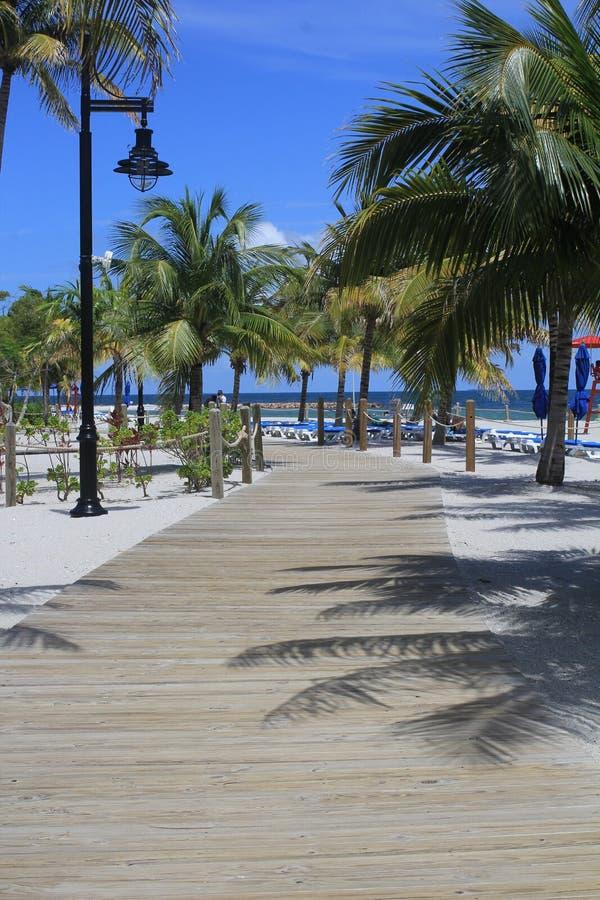 Via della spiaggia nel raccolto Caye, Belize fotografie stock