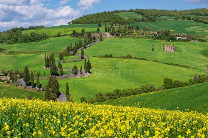 Via della Toscana, d'Orcia di Val immagine stock libera da diritti