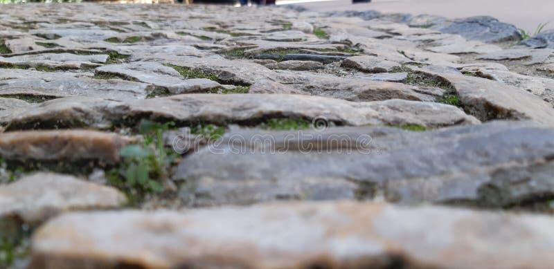 Via della vista bassa di Barcellona sulla strada europea della vecchia pavimentazione immagine stock libera da diritti