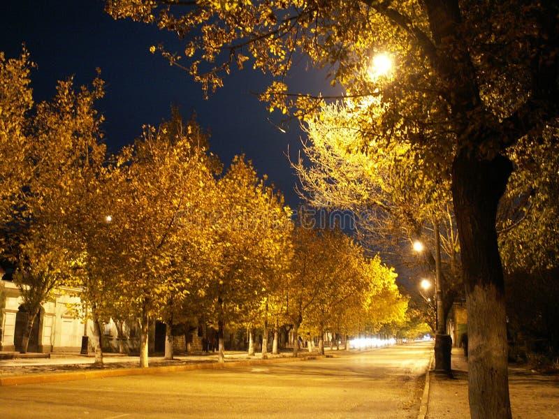 Via di notte immagini stock