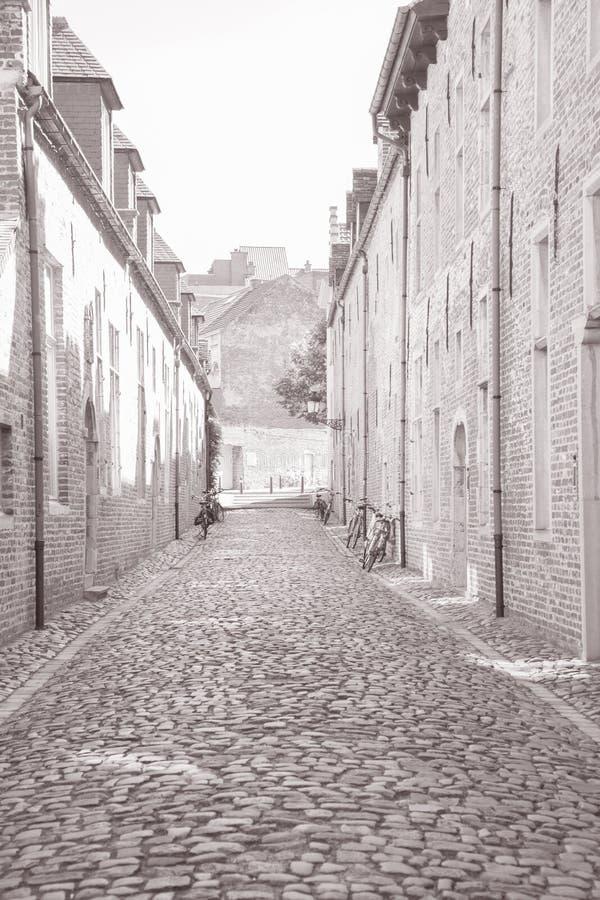 Via di pietra del ciottolo, Groot Begijnhof, Lovanio immagine stock