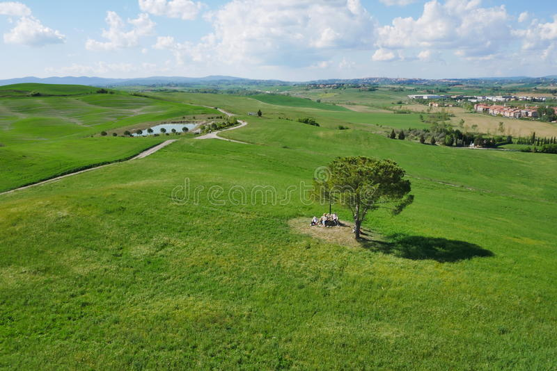 Via francigena detail. Tree green blue sky royalty free stock photography