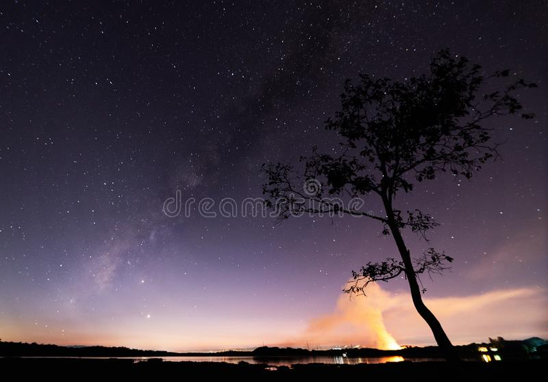 Via látea e noite estrelada sobre lago ou rio com árvore de fundo foto de stock royalty free
