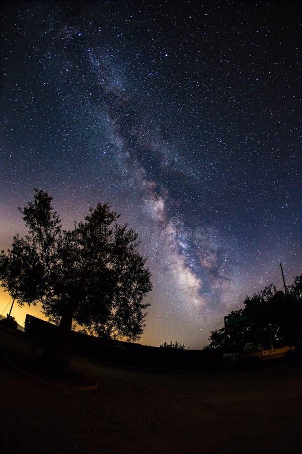 Via Látea na flor sobre o céu noturno em Sierra Nevada, Espanha fotografia de stock royalty free