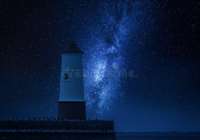 Via Lattea e lanterna sopra il mare con gli uccelli fotografia stock libera da diritti
