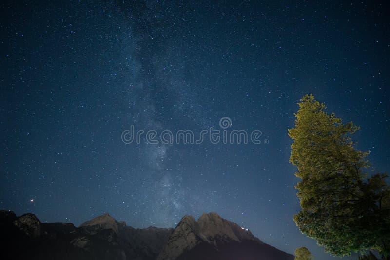 Via Lattea sopra la montagna con l'albero immagine stock