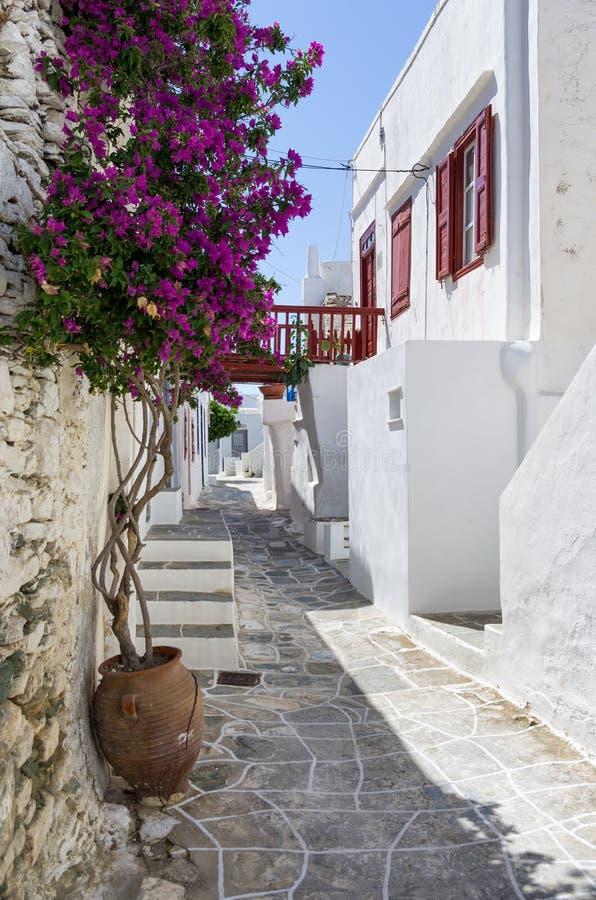 Via nell'isola di Sifnos, Cicladi, Grecia immagini stock libere da diritti