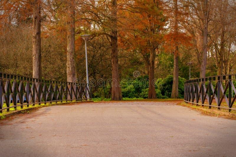 Via nella sosta di autunno fotografia stock