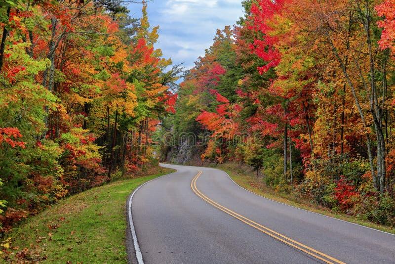 Via pública larga e urbanizada dos montes, Tennessee imagem de stock royalty free