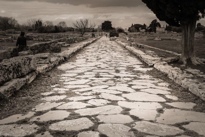 Via Sacra Romare stenlagd väg Paestum salerno Campania italy arkivbild