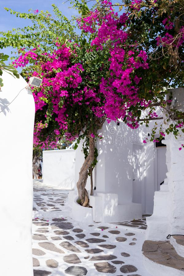 Via stretta tradizionale in Mykonos fotografia stock libera da diritti