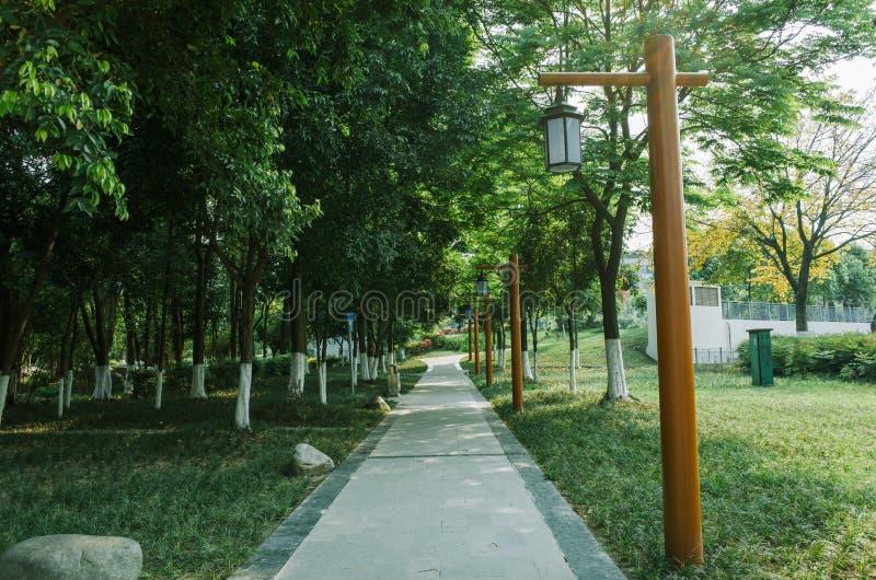 Via in un parco a Chengdu, Cina fotografia stock