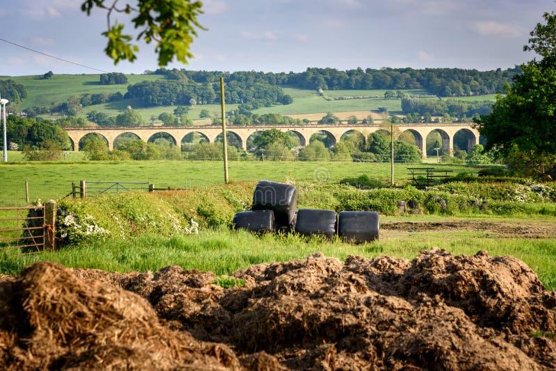 Viadotto Yorkshire Regno Unito di Ribble immagini stock