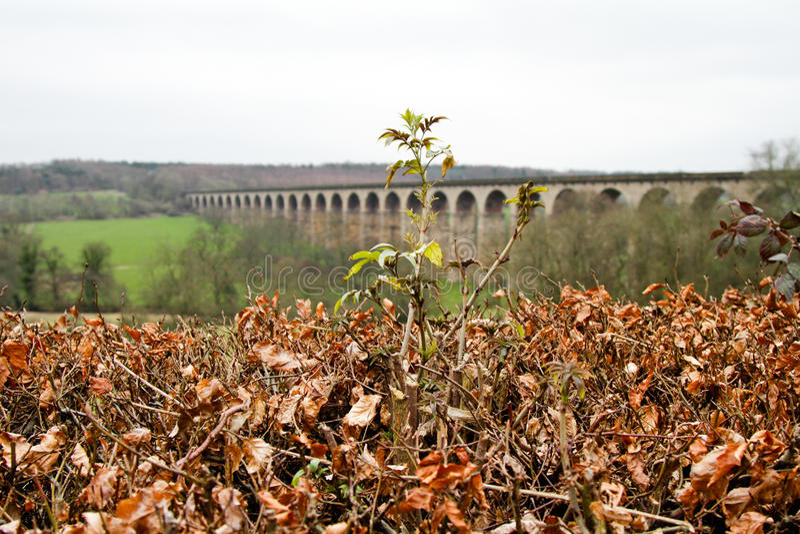 Viaduc de Harrogate dans Yorkshire photo libre de droits