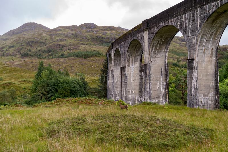 Viaduto Railway famoso de Glenfinnan em Escócia fotos de stock royalty free