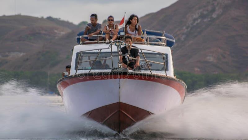 Viagem à ilha de Komodo fotos de stock